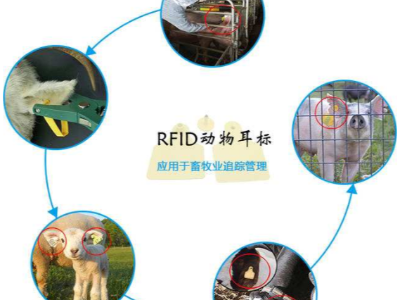 RFID技术对畜牧管理提供了科学模式